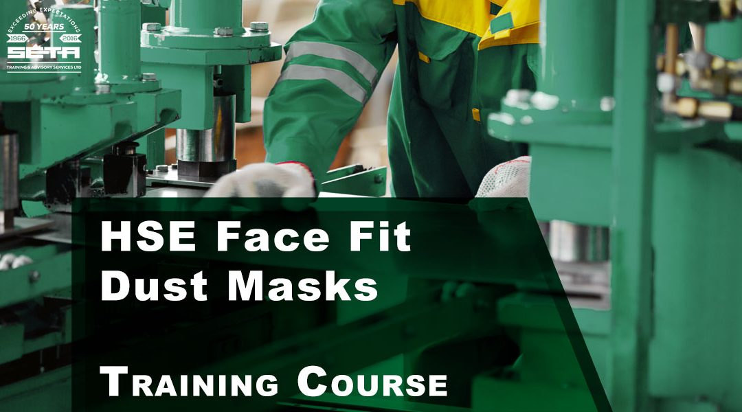 HSE Face Fit Dust Masks
